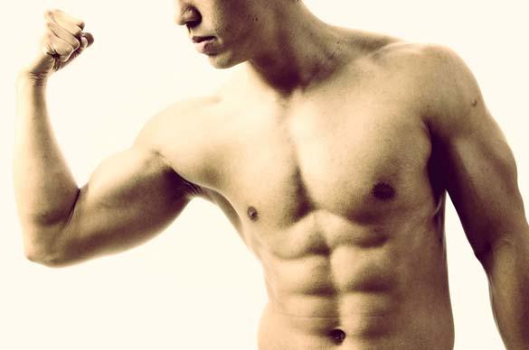 A gordura pode ser transformada em músculo?