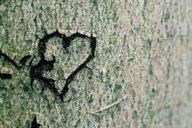 A perigosa frase: Eu te amo mais do que a própria vida