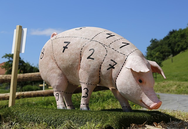 Alergia a Carne de Porco | Sintomas, Causas e Intolerância a carne suína