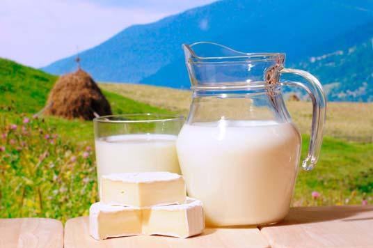 Alergia de leite ou intolerância ao leite - Sinais e Sintomas