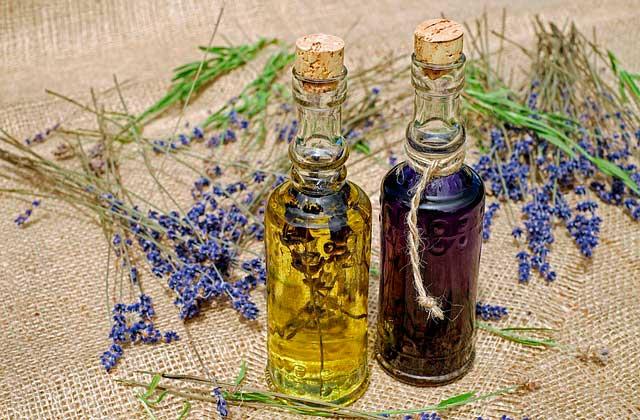 Alergia à lavanda | Reações alérgicas ao óleo de lavanda