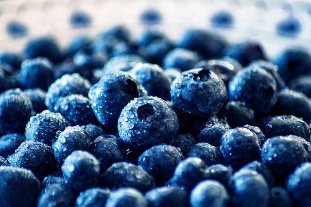 Alergia de Mirtilo | Sintomas , Sensibilidade e Teste de Alergia a Blueberries