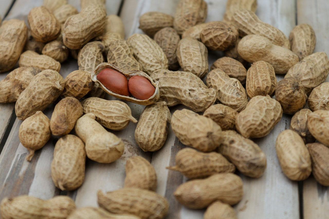 Amendoim ou nozes causam sensação de queimação na boca
