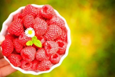 Relação de Antioxidantes e o Colesterol