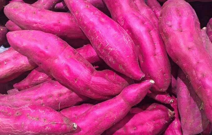 Batata-doce rica em carotenoides para uma boa saúde da visão