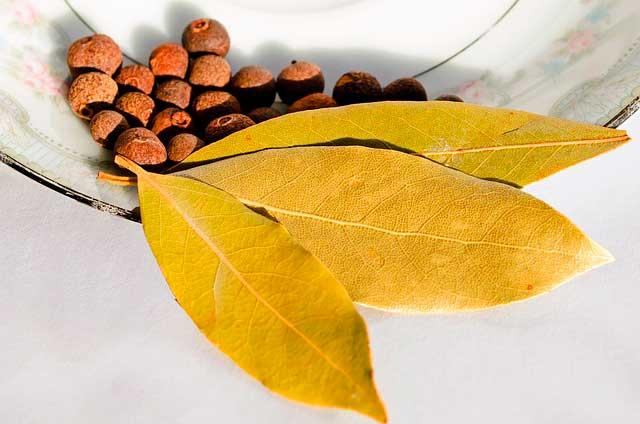 Medicina Alternativa | Os benefícios da pimenta da Jamaica