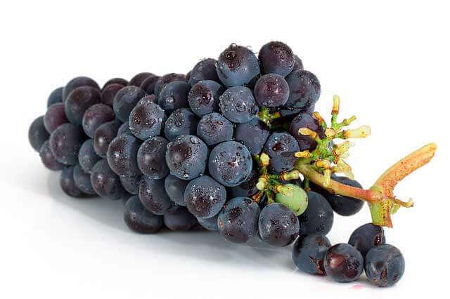 Benefícios das uvas para a saúde