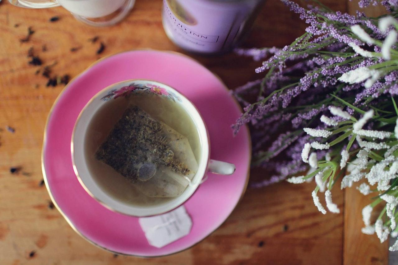 Casca de Cãibras (Viburnum) | Benefícios e Usos