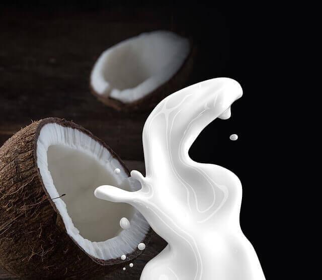 Benefícios do Leite de Coco para Saúde
