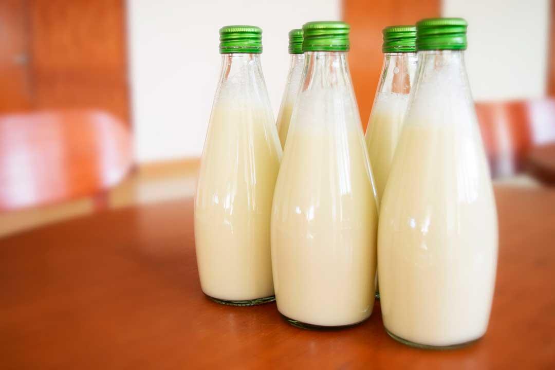 Benefícios para a saúde da proteína de soro de leite