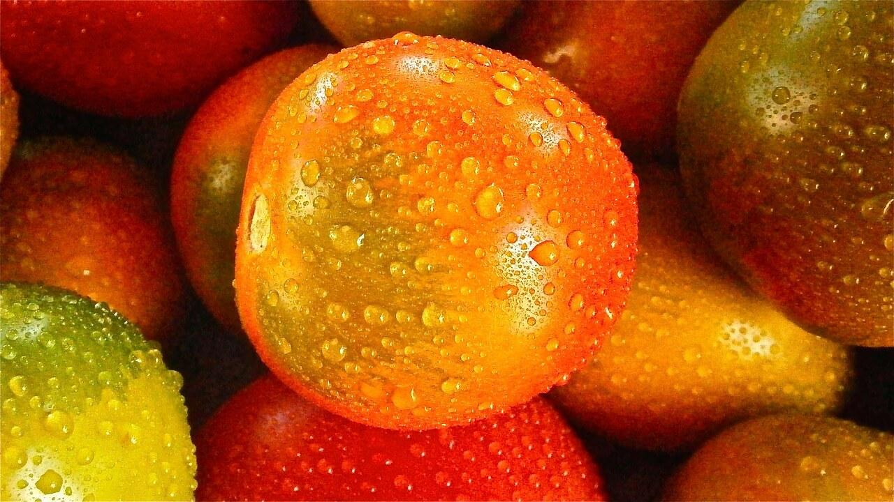 Benefícios do tomate para diabetes