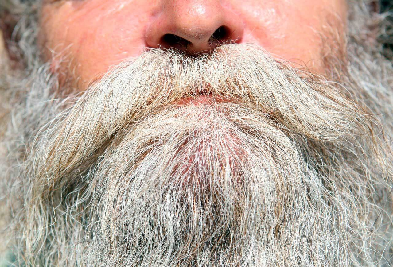 Cabelo cinza | Causas do cabelo cinzento