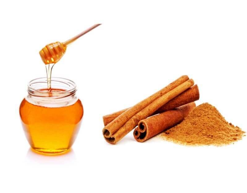 Canela e mel podem ajudar perder peso?