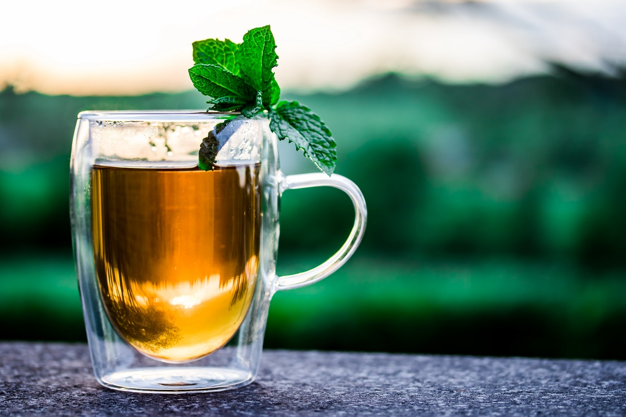 Chá de Boldo | Benefícios para a Saúde, Usos, Riscos e Efeitos