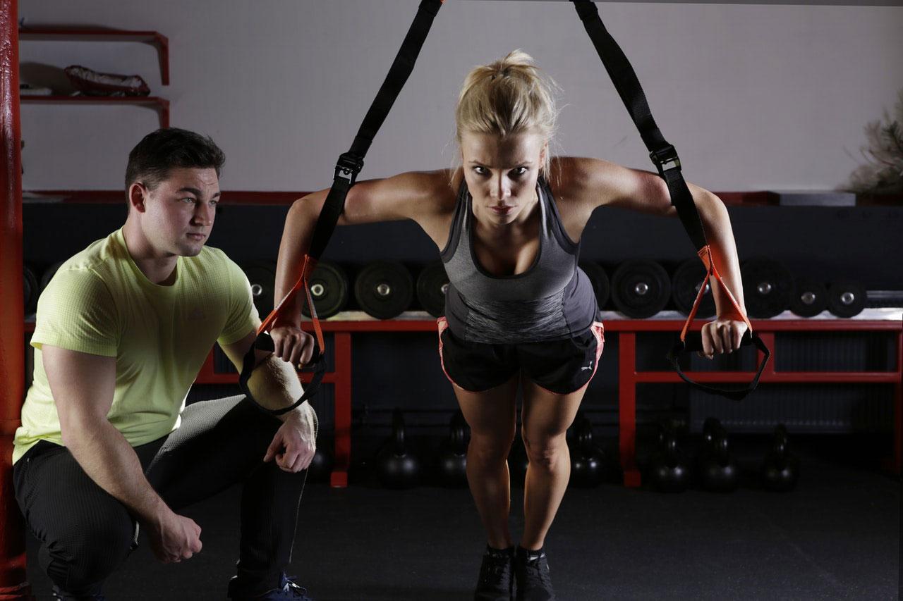 Como funciona o sistema esquelético com o músculo