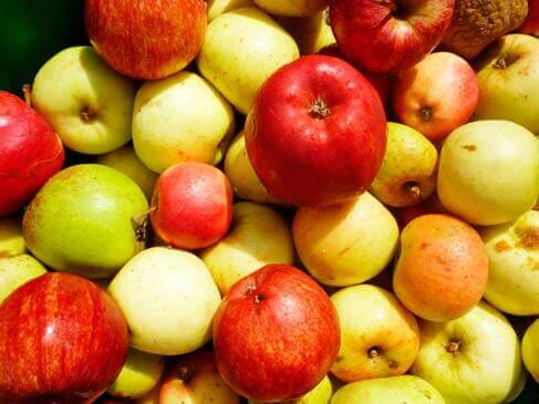 Cuidado com o excesso de frutas
