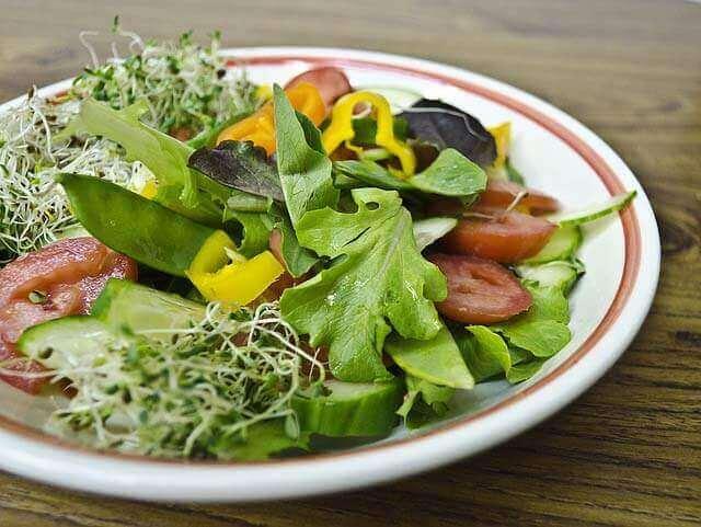 Dieta vegetariana mais eficaz para perder peso