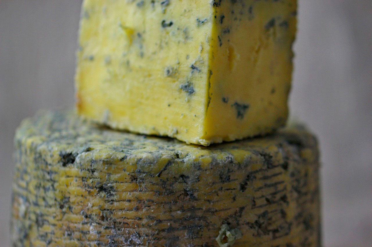 Fungo do queijo pode causar alergia