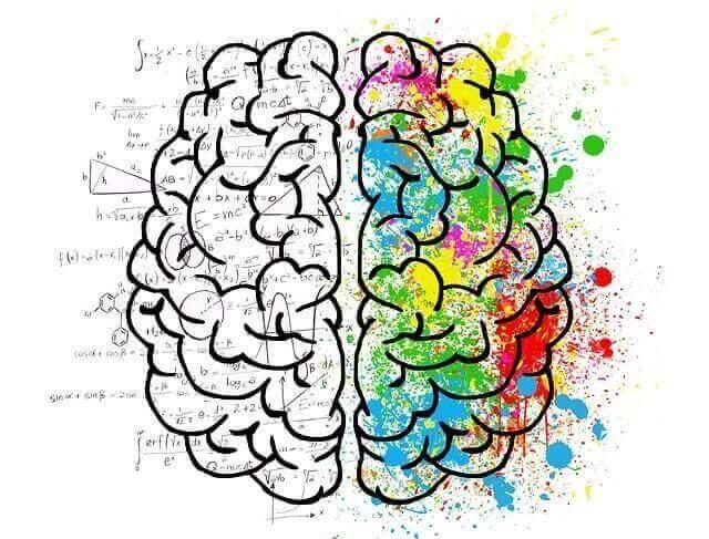 Lesão Cerebral | Causas das Lesões Cerebrais