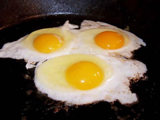 O que é colesterol, e por que precisamos do colesterol?