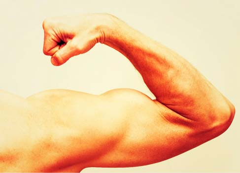 O que é testosterona?