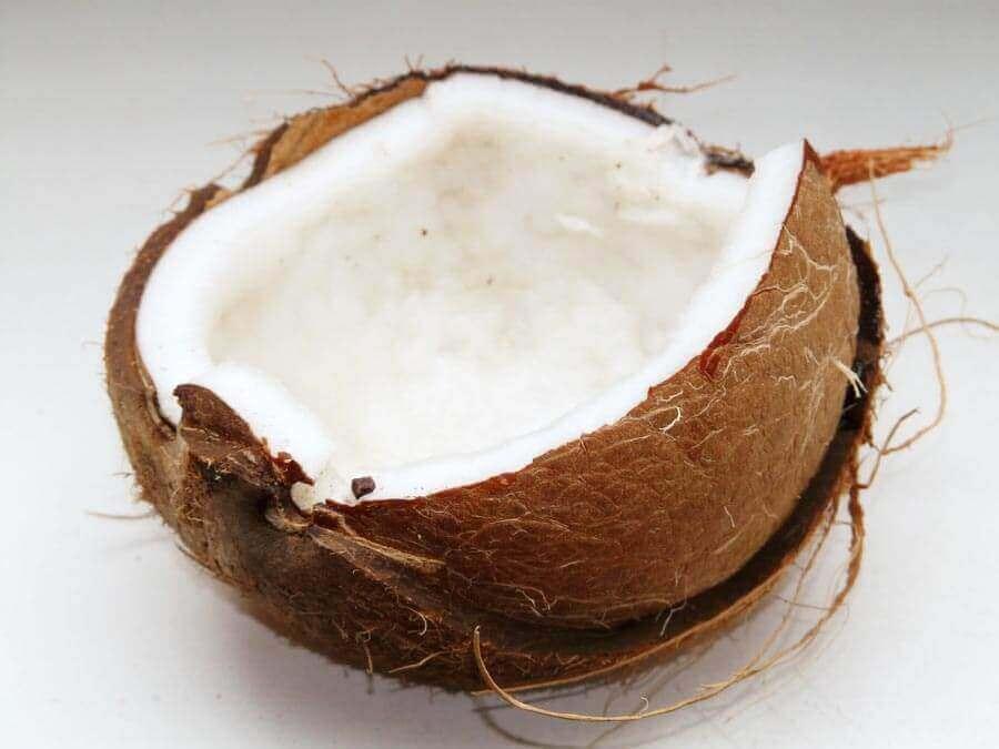Óleo de coco pode curar o hipotireoidismo?