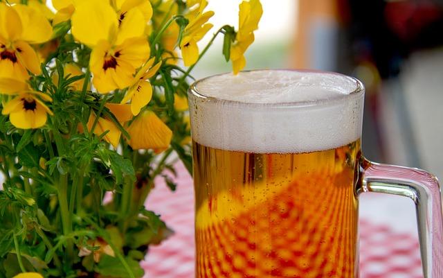 Os benefícios da cerveja para a saúde