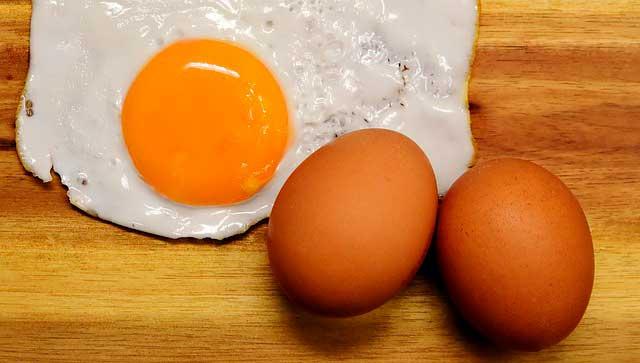 Ovos podem causar alergias em crianças