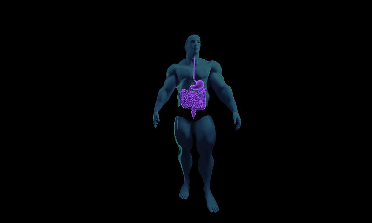 Perfuração intestinal | Sintomas, Causas e Tratamentos