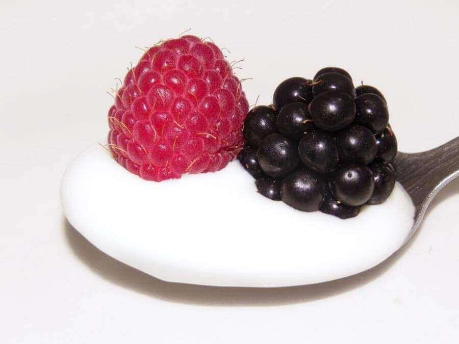 O iogurte contém proteínas? Proteínas no iogurte