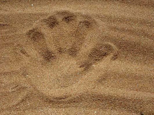 Queimação, Formigamento e Dormência nas Mãos e nos Pés