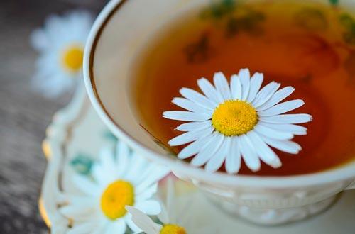 Remédios naturais e caseiros para cistos ovarianos