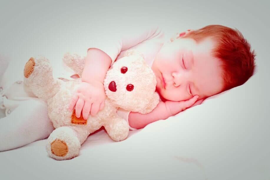 8 Remédios Naturais para Dormir e Relaxar