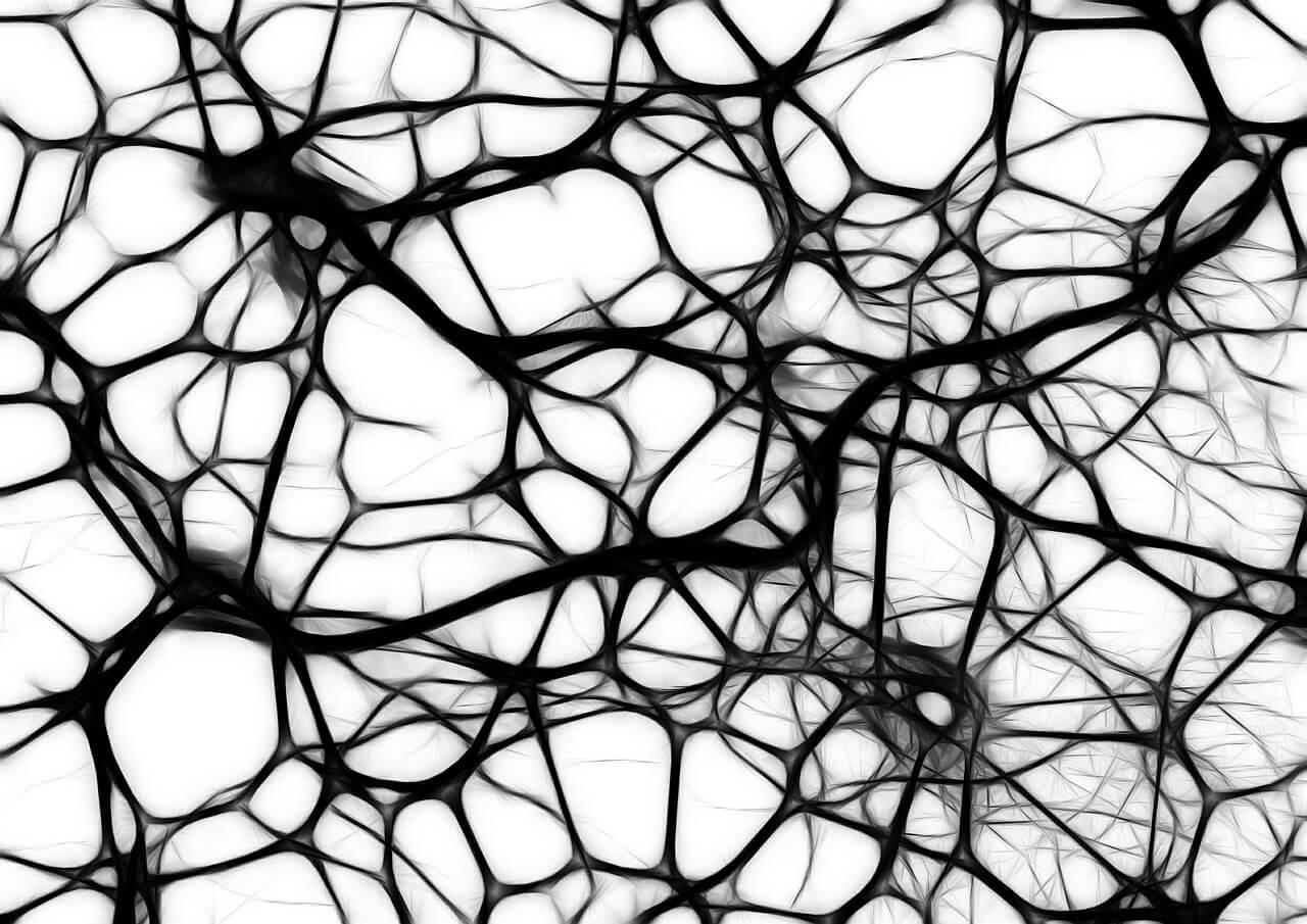 Síndrome cerebral orgânica | Causas, Sintomas e Tratamento