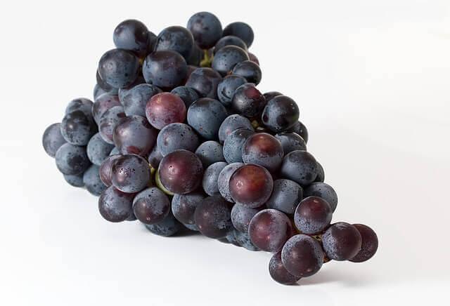 Como o Suco de Uva pode Ajudar com Enxaquecas?