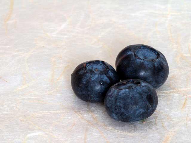 Usos e benefícios do extrato de mirtilo