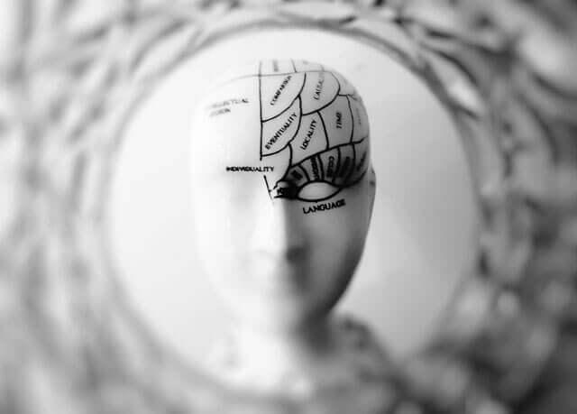 Verme no cérebro   O que causa verme no cérebro