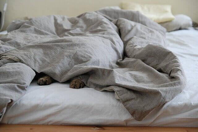 Você não está conseguindo descansar?