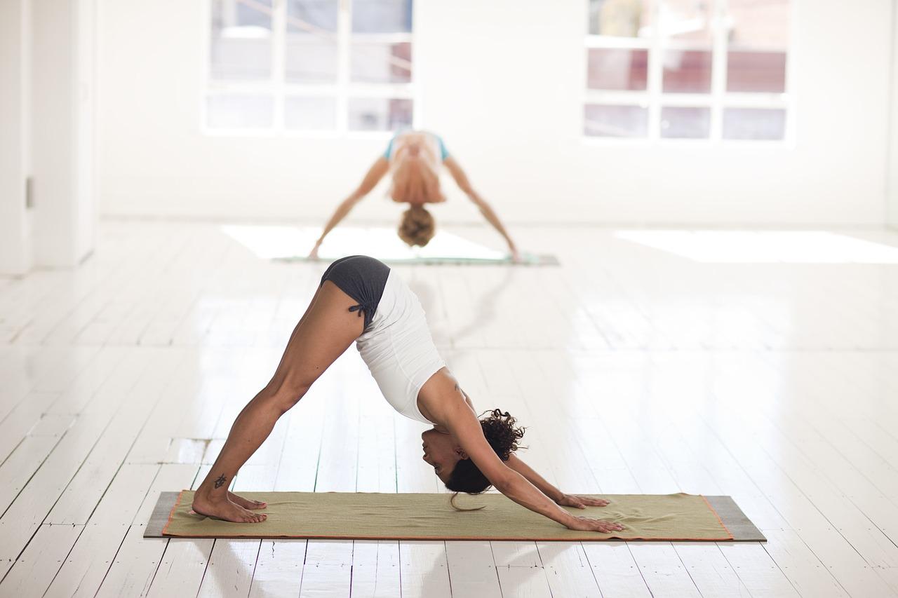 Yoga | Perder Peso, Tipos de Ioga