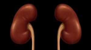 Insufici�ncia renal aguda - les�o renal aguda