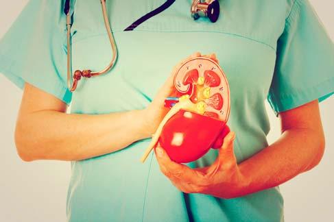 Nefrologia - Doen�as nos rins