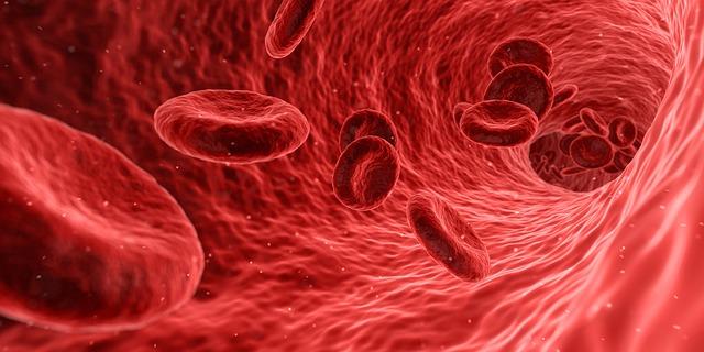 Agranulocitose: tipos, causas e sintomas